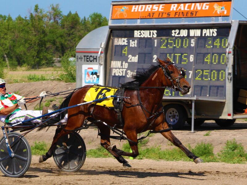 Futurity Eliminations on Saturday, July 24th